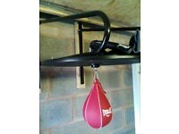 Everlast speed punch bag. With gloves.
