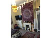 Lovely room in friendly house share in the heart of the lively St Georges, Bristol