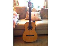 Flamenco guitar -- Prudencio Saez 15