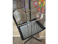 Birds cage / budgie