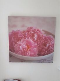 Pink canvas square shaped