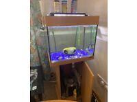 JEWEL 120 LTR Aquarium,