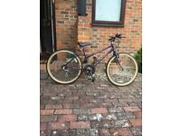 Ladies Raleigh inigma 10 speed cycle + Gents Raleigh Pioneer 15 speed cycle both rarely used £100