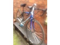 Giant Racing/Road Bike