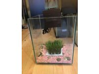 Fluval chi fish tank new never used.