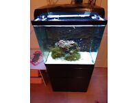 Red sea max marine fish tank 130 l include everythink becouse we dont have time to take care