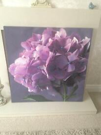 Next large purple flower canvas picture frame