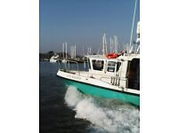 SOUTH 26 SPORTS SEA FISHING BOAT DUE SOUTH