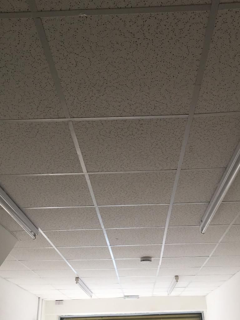 Armstrong Brand Suspended Ceiling Tiles In Sparkhill West