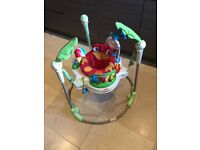 Rainforest Jumperoo - Great condition