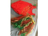 Red and gold dancing costume.