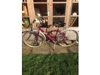 Lady's Raleigh bike with basket ( not mountain, hybrid bike )