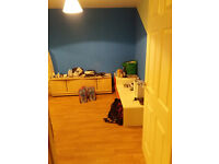 Double bedroom in semi-detached house G22 250 p/m