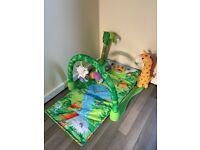 Baby Fisher Price Play Mat Jungle Gym Smoke Free Home