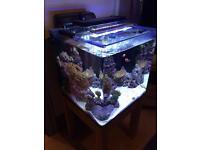 Fish tank 60litre, cube style, marine led lights.