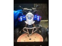 Quadzilla 200cc road legal quad