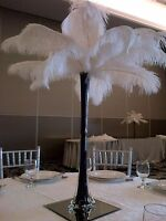 Feather Centerpieces for Rent
