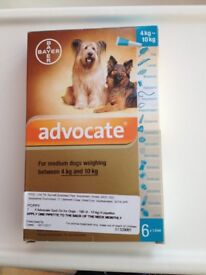 Advocate Spot On for Dogs - 100 (4 - 10 kg) 6 pipettes