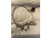 Pandora bracelet, 6 silver and gold charms and safety chain.