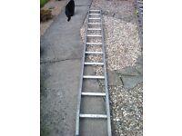 Twelve Rung Ladder
