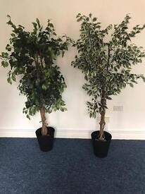 Artificial indoor/outdoor trees