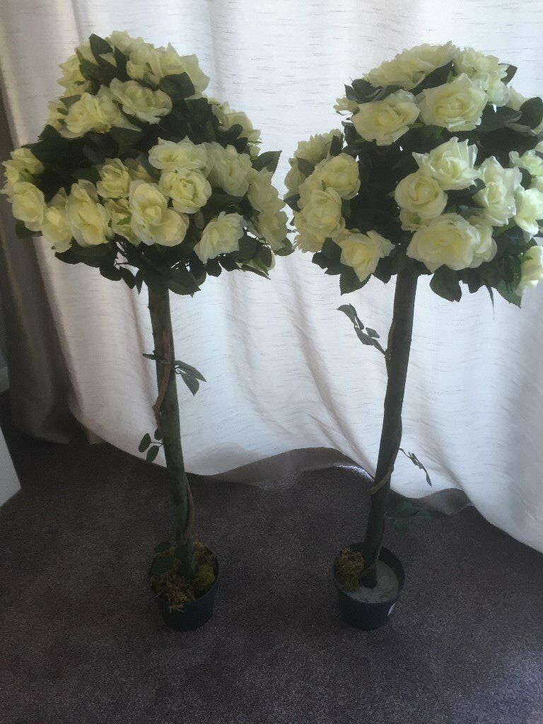 Wedding Bay Trees X 2