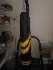 Heavy Bag and Everlast metal Stand