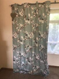 Duck egg curtains.