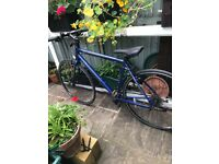 Carrera Gryphon bike