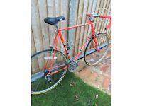 Vintage Carlton Road Bike