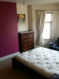 ** DELUX ROOM to RENT on ORMEAU ROAD **