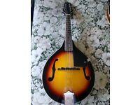 Stagg M20 Traditional Bluegrass Mandolin