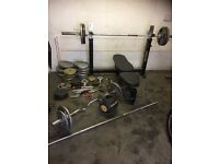 Olympic Powertech Weight Bench and tyre punch bag