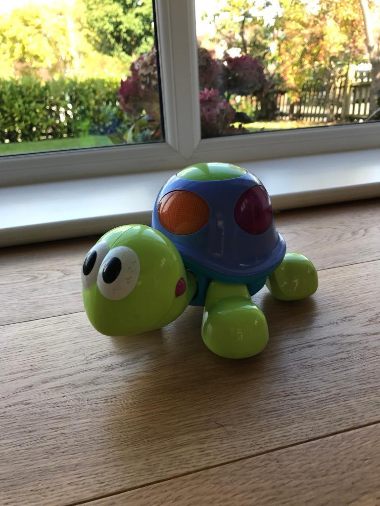 Baby turtle toy