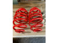 Insignia 40mm lowered rear coil springs