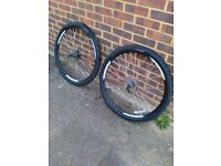 A pair of mountain bike wheels