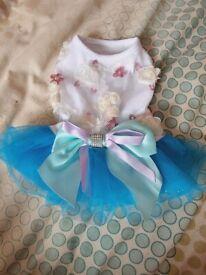 Puppy Dress (New!)