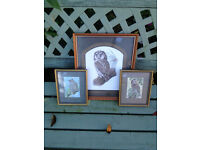3 Owl Pictures in lovely condition. 2 woven in fine silk