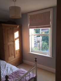 Single Room to Rent in Large Character Property