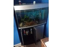 410cm x 890cm x 460cm Fish tank and cupboard