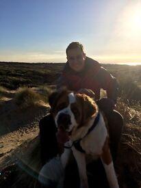 Dog walker. Fully insured. First walk free!