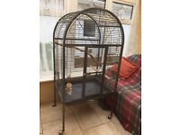 Large Bird Cage ideal for parrots or macaws