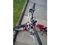 Mongoose Rockadile bike