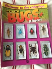Collection of bugs.