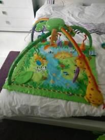 Fisher-price baby gym mat