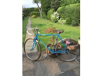1950's BSA 5 Speed Road/Race Bike Size 23IN/58CM