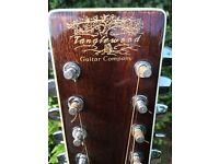 Left Handed Tanglewood 12 String Guitar with Stand