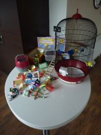 Bird cage including accessories