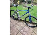 Full size bike
