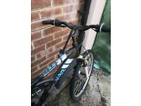 Raleigh mission mountain bike